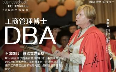 BSN荷兰商学院工商管理博士学位班(DBA)