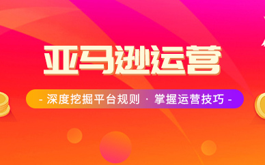 广州美迪电商亚马逊运营培训班