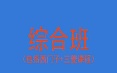 西门子/三菱综合班