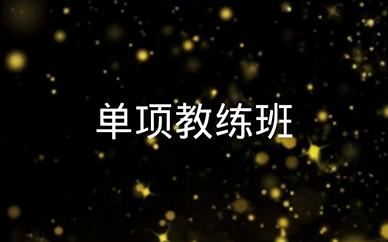 苏州华翎舞蹈单项教练课程班培训