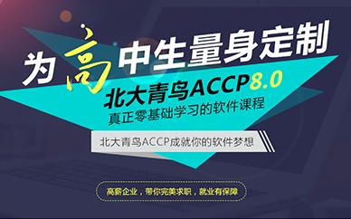 重庆北大青鸟ACCP软件培训课程