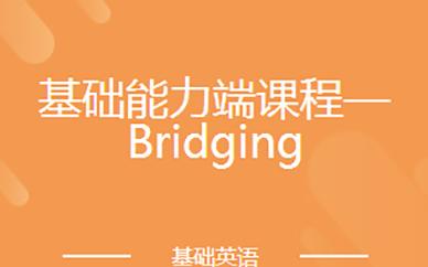 基础能力端课程—Bridging