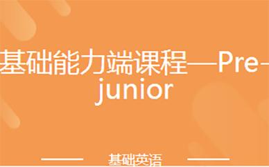 基础能力端课程—Pre-junior
