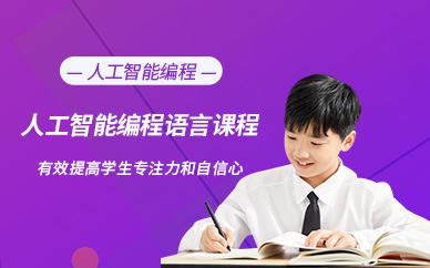 南京童程童美少儿人工智能编程培训课程