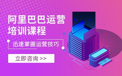 深圳美迪电商阿里巴巴总裁培训