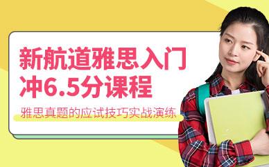 深圳新航道雅思入门培训班