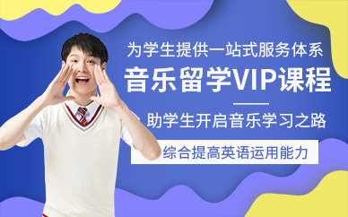 成都斯芬克音乐留学VIP培训课程