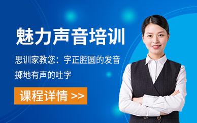 南京思训家魅力所声音课程培训班