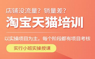 南京春华教育淘宝运营培训班
