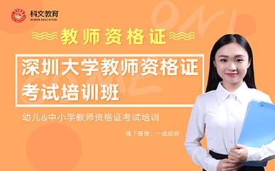 深圳文都教育大学教师资格证考试培训班