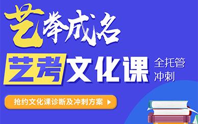 北京金博教育艺考文化课培训班