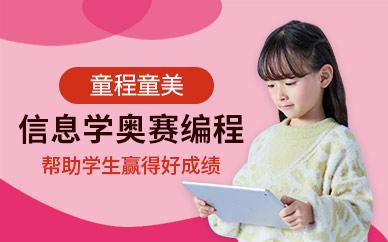 天津童程童美信息学奥赛编程培训班