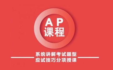 天津新通教育AP培训课程