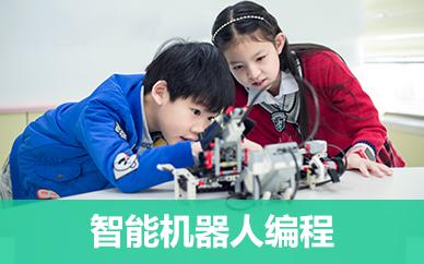 沈阳童程童美少儿机器人培训