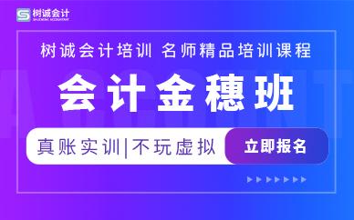 福州树诚会计金穗班培训课程