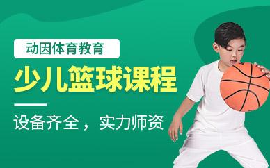 深圳少儿篮球培训课程