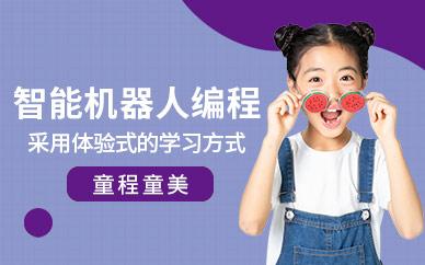 上海童程童美少儿机器人培训