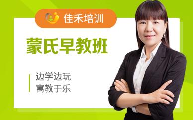 上海国际教育蒙氏早教培训班