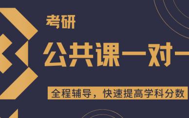 天津考研公共课一对一培训课程