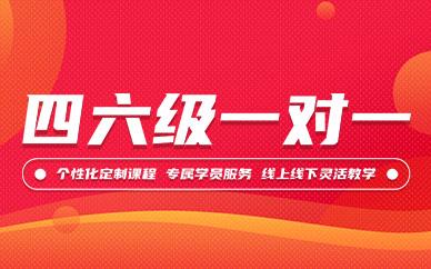 北京新东方英语四六级一对一培训课程