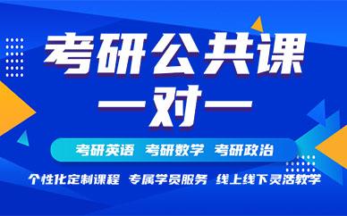 北京新东方考研公共课一对一培训课程